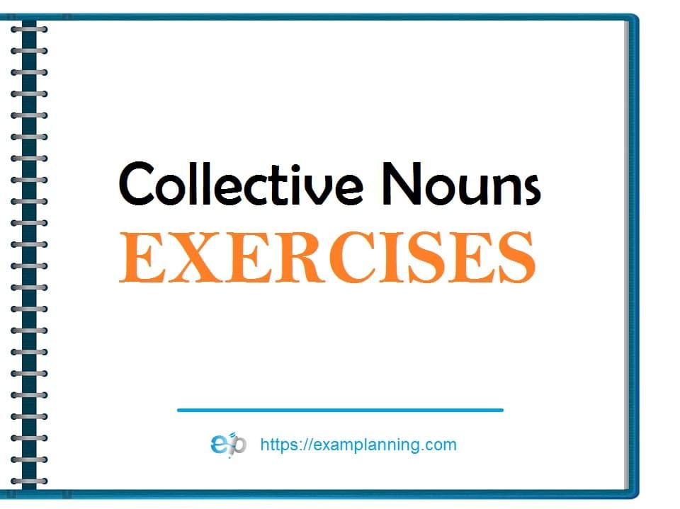 Collective nouns exercises
